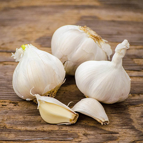 California White Garlic
