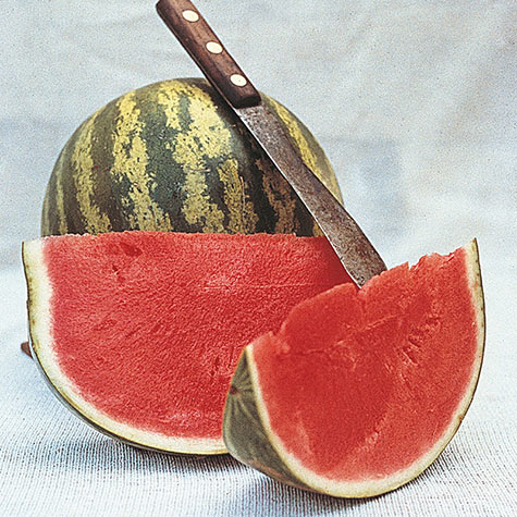 Crimson Sweet Watermelon
