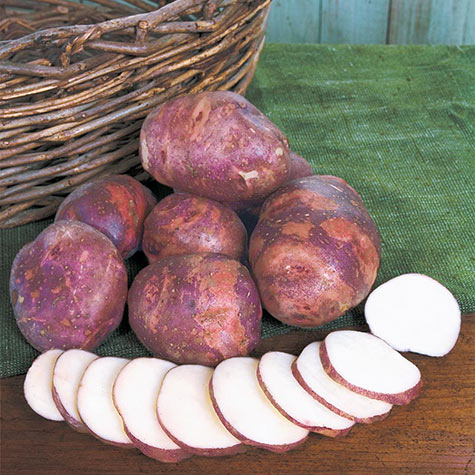 Purple Viking Potatoes