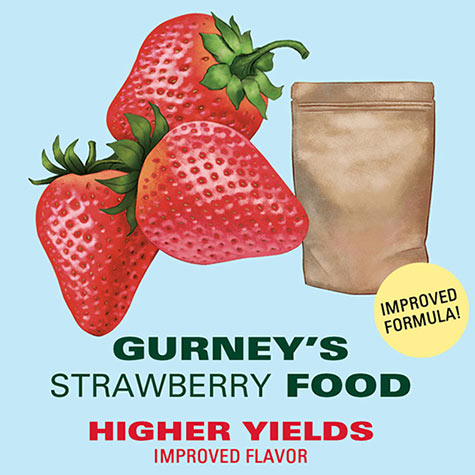 Gurney's<sup>&reg;</sup> Strawberry Food